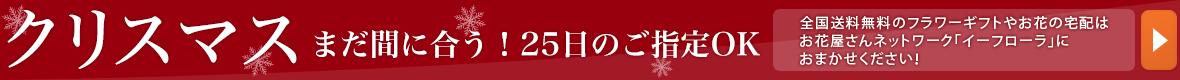 クリスマスのフラワーギフト承り中 全国送料無料のフラワーギフトやお花の宅配はお花屋さんネットワーク「イーフローラ」におまかせください!