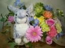 ウサギのナンシーとお花畑