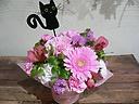 母の日「ブラックキャット・ピンク」