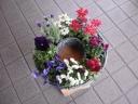 母の日 寄せ鉢 パート2