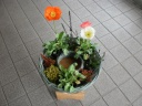 母の日 寄せ鉢 パート3
