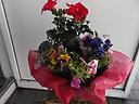ガーデン花&花鉢2