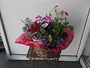 ガーデン花&花鉢3