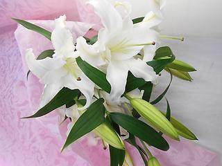 【?純白の大輪ユリの花束?】