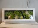 プリザーブドフラワー~green box~