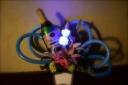 ブルーローズLEDのバルーンアレンジメント
