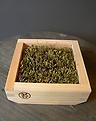 ヒノキ枡の苔庭2個set