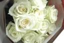 『白バラの花束』