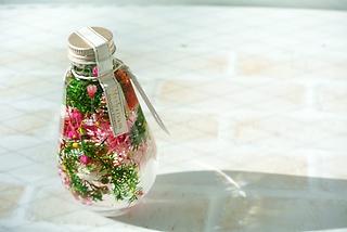 コニファーとお花のハーバリウム