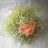 カーネーションとカスミソウの花束