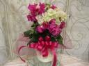 ブーゲンビリア 2色植え 5寸鉢