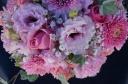 優しいピンクの色合いで・・