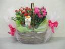 バラとカーネーションの寄せ鉢