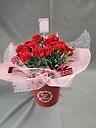 赤いカーネーション鉢植え