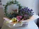 観葉植物と花鉢セット