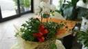 胡蝶蘭・シュガーバインの寄せ鉢