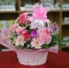 花とハーブティー ピンク系