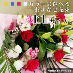 おまかせ花束LLサイズ