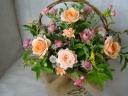 原色じゃないオレンジ、ピンクのお花達