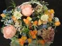花子お薦めオレンジ系の優しいお花たち
