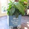 コーヒーの木ウッドカートプランター