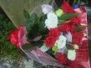 真夏の深紅のバラ