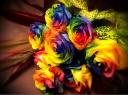 高品質レインボーローズ10本の花束