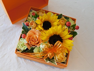 オレンジボックスフラワー(ひまわり)