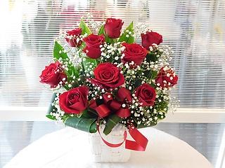 赤バラとカスミソウのシンプルアレンジメント