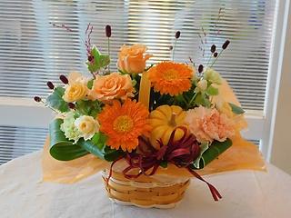 秋のかぼちゃ入りアレンジ(小)