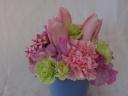 ◇~Spring Pink~◇