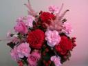Pink&Red flower