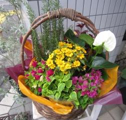 季節のお花の寄せバスケット⑦