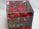 アクリルBOXに赤いバラ