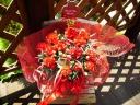 赤カーネーション鉢とムーンダスト花束のギフト