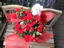 赤いカーネーションの花鉢 プードルピック付