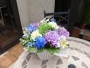 優しさいっぱいの供花アレンジメント