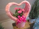 まるごと!ハートの贈り物 ~ピンク・カーネーション