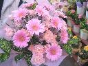 ガーベラの花束(ピンク系)