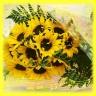 季節のヒマワリ!10本花束