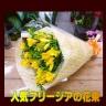 フリージアの20本花束