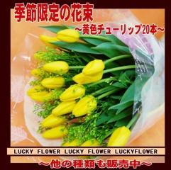 チューリップ20本の花束!!黄色