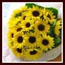 サンフラワー ヒマワリの花束