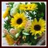 サンフラワー ひまわりの花束