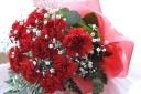 「母の日」-赤いカーネーション&かすみ草のブーケ-