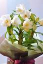 「母の日」-洋蘭 フォーミディブル-