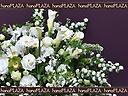 hana*PLAZA -おすすめフラワーギフト-