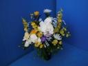 白い胡蝶蘭と 大輪菊