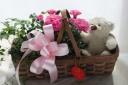 白クマちゃんと花鉢のブラウンバスケット