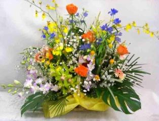 バラと蘭の御祝いアレンジメント